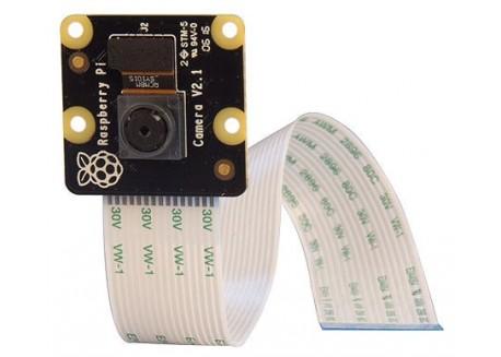 Cámara Raspberry Pi NoIR v2 - 8 Megapixels